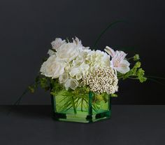Sheer Elegance  Pure white, single stems of hydrangea, alstroemeria, Queen Anne and spray rose comprise this gorgeous, vintage design arranged in a distinguished-looking cube vase. Bupleurum and bear grass complete the beautiful display.  Price $42.99  http://www.flora2000.com/Shopping/United-States.asp?sbp=1