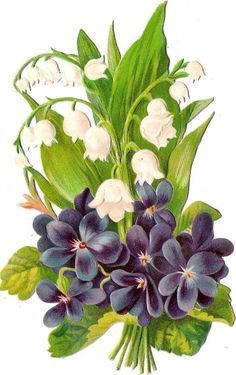 lily of the valley violet art - Google Search