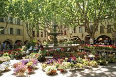 the lovely flower market in Uzes, southern France...