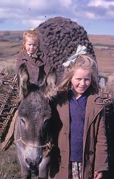 Gathering Turf, 1963 | from National Library of Ireland