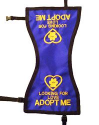 nice vests to use for our shelter dogs