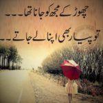 Tou+pyaar+bhi+apna+ley+jaatay+urdu+sad+poetry+images