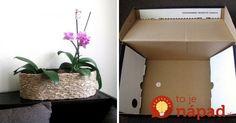 Kvety prinášajú do interiéru krásu, farby a život. Napríklad taká orchidea – kráľovná izbových rastlín, je skutočným skvostom každej domácnosti. Vďaka elegantnému obalu z nej však môžete vykúzliť najkrajší doplnok vašej domácnosti. Vyrobte si vlastný obal na kvetináč, ktorý je ideálnym riešením nielen pre orchideu, ale aj pre ďalšie izbové rastliny.