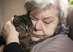 Das Schnurren einer Katze kann für Demenzerkrankte zumindest für den Augenblick eine erhebliche Steigerung des Wohlbefindens sein