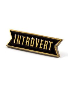 Introvert pin. Kind of a good idea, actually.