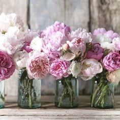 Pretty in pink! #flowerlover #floweroflife