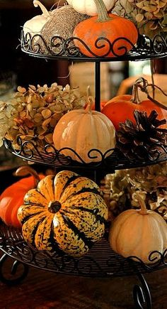 Fall decor for your home using a tiered dessert rack and some mini pumpkins and gourds. #fall #falldecorating