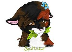 34 best spottedleaf images  warrior cats warrior cats