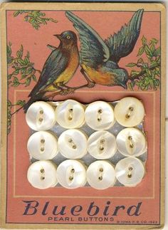 carton de boutons, rose, oiseaux