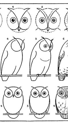 Learn To Draw Free Vintage Printable How to Draw Owls Activity Page. Graphics Fairy - Learn how to Draw an Owl with this free Printable Drawing Lesson Activity Page. There are 3 different Style Owls on the page. Easy and fun! Bird Drawings, Art Drawings Sketches, Animal Drawings, Easy Drawings, Drawing Animals, Drawing Owls, Rock Painting Patterns, Rock Painting Designs, Drawing Lessons