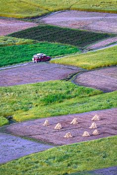 Fields Of Shimshal | Baltistan, Northern Pakistan.
