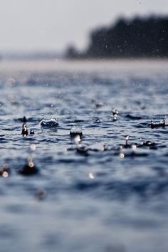 Raindrops on the water - beautiful