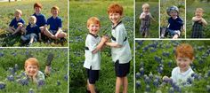 Where to Find the Best Bluebonnet Picture Sites in North Texas