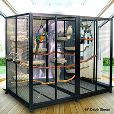 Bird Cage x x The bird cage is both a home for the birds and a pretty tool. You are able to pick anything you want on the list of bird cage designs and get a great deal more specific images. Small Bird Cage, Large Bird Cages, Small Birds, Pet Birds, Large Parrot Cage, Parrot Cages, Parrot Bird, Colorful Birds, Macaw Cage