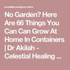 No Garden? Here Are 66 Things You Can Can Grow At Home In Containers | Dr Akilah - Celestial Healing Wellness Center