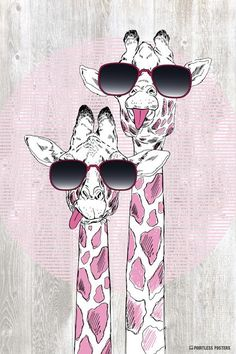Giraffes With Sunglasses Poster – Pointless Posters