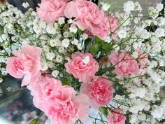 pink carnations and babys breath    imagine purple carnations instead :)