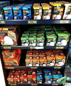 Looking for something to keep your reptile's home warm? 😊 We've got various accessories to keep your baby happy! Visit our shop/site for your reptile needs! 👌 #MagazooReptiles Us Shopping Sites, Reptile Accessories, Reptiles, Ceramics, Food, Ceramica, Pottery, Essen, Meals
