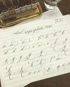 * * Lesson sample for Copperplate flourishes I'm making it now✨ . 明日、ヴォーグ学園名古屋校カリグラフィー教室で使うカッパープレートのフローリッシュのテキストを製作中です。 次は大文字です✨ . . #calligraphy #calligraphie #Каллиграфия #kaligrafi #schoonschrift #calligrafia #Kalligraphie #西洋書法 #カリグラフィー #handwriting #カリグラフィー教室 #テキスト #copperplate #flourishes #lessonsample