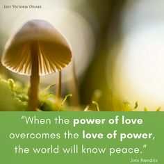"""""""When the power of love overcomes the love of power, the world will know peace.""""  Jimi Hendrix . . . . . . . . . #Gandhi #MahatmaGandhi #JimiHendrix #Peace #Power #Harmony #Joy #Happy #Happiness #Motivation #Inspiration #Quotes #Quote #PeaceQuotes #InstaQuote #GandhiQuotes #QuotestoLiveBy #MotivationalQuotes #InspirationalQuotes #Inspire #IzeyVictoriaOdiase #QuoteoftheDay"""