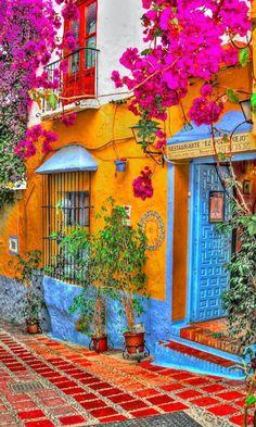 restaurante el pozo viejo, Marbella, Spain