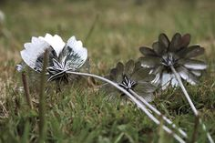 Sterling silver Cosmos, Rudbeckia & Echinacea flowers handcrafted by Danniella Wilde