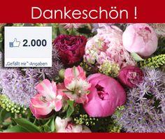 Dankeschön für 2000 Gefällt-mir-Klicks auf Facebook in einem Monat (26.04. - 26.05.2014)