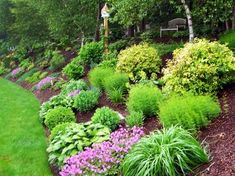sloping backyard home landscape with mulches and ornamental grases : Sloped Backyard Home Landscape. home landscaping ideas,home landscaping pictures,sloped backyard landscape,sloped backyard landscape ideas,sloped backyard landscaping designs Sloped Backyard, Sloped Garden, Backyard Hill Landscaping, Landscape Design, Backyard Garden, Outdoor Gardens, Landscape, Hillside Landscaping, Landscaping A Slope