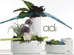 Designed by Brooke Raulerson Products by Accent Decor