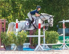 Beezie Madden develops athleticism and rideability at the 2016 George H. Morris Horsemastership Training Session.