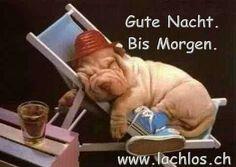 Wünsch euch eine gute Nacht - http://guten-abend-bilder.de/wuensch-euch-eine-gute-nacht-193/
