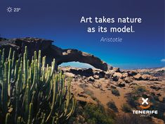 Tenerife, Islas Canarias // Art takes nature as its model. Canary Islands // Kunst nimmt die Natur als Vorbild. Tenerife, Canary Islands, Nature, Model, Life, Art, Frases, Naturaleza, Tourism