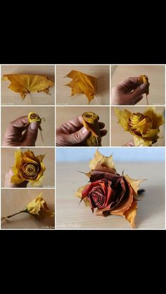I like this idea for the boutinner and put just a couple of accent flowers for the groom and grooms men :-)