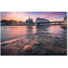 Trademark Fine Art Notre Dame de Paris Canvas Art by Mathieu Rivrin, Size: 16 x 24, Multicolor