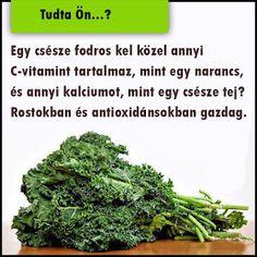 Életmód cikkek : Egészségünkért Jaba, Herbs, Nutrition, Food, Gardening, Essen, Lawn And Garden, Herb, Meals