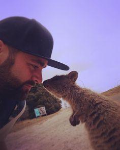Managed to capture this selfie whilst kissing a Quokka today! #quokka #selfie #kiss #rottnest #rottnestisland #island #westcoast #westernaustralia #australia by trendyslug http://ift.tt/1L5GqLp