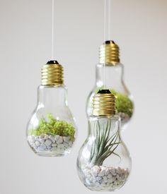 decoradornet-diy-terrario-de-lampadas-04
