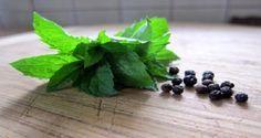 3 potraviny, ktoré vyriešia váš problém s chrápaním | TOPMAGAZIN.sk