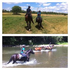 ... equestrian summer sun fun! #equestrian #summer #sun #fun #horse #pony #rider #horseriding #trencin #slovakia