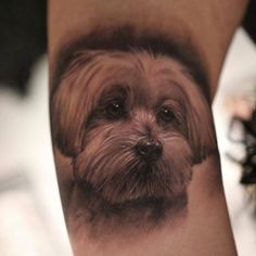 Cute realistic portrait of a dog tattoo