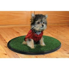 $39.99-$0.00 The only dog potty shaped to work with a dog's natural instinct to circle. Features Pup-Grass proprietary attractant. Go-Spot will have most dogs potty training immediately.