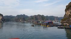 Escape to CATBA Island: HALONG BAY without tours and tourists   Tapir Tales - Travel Blog - Malaysia