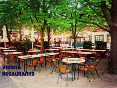 3 of the best #Vienna #Restaurants from giant schnitzels to giant meals lol