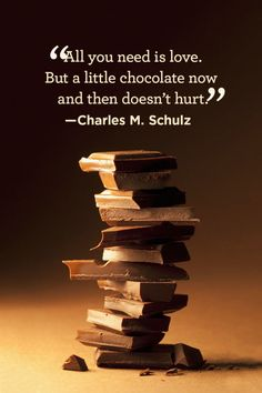 """All you need is love. But a little chocolate now and then doesn't hurt."""