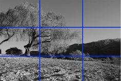 5 Simple Composition Tricks for a Fantastic PhotobyDigital Photo Secrets