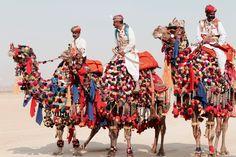 by Rajdeep Singh, Travels with Raj. Pushkar Camel Fair. Pushkar, India. #beautiful ##India #indianfestivals #camels #pushkar #pushkarfair #travel #photography