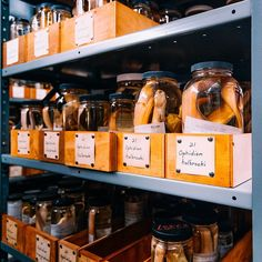 A behind-the-scenes look in the Ichthyology collections area #InsideAMNH by @samthecobra