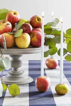 We are wild about decorating for fall on a budget. We love decorating for fall using apples and seasonal fruit it is a great budget-friendly option. Whether You are looking for fall decor for the porch or indoor fall decor, there are fall decorations for the entire home. Keep reading as we share nine simple and savvy fall decorating ideas. Hadley Court Interior Design Blog by Central Texas Interior Designer, Leslie Hendrix Wood.