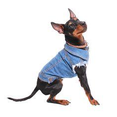 Unpatched - Denim Dog Vest Raw Blue - PetHaus