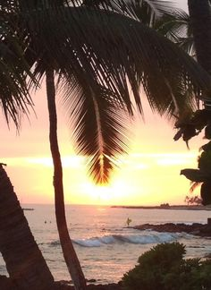 View of a Kona sunset!